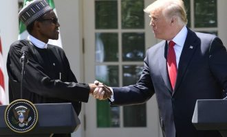 VIDEO: 'Nigeria corrupt but Buhari cutting down substantially' — 7 takes from Buhari-Trump address