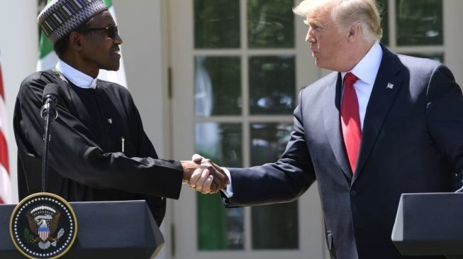 Report: Trump said he never wants to meet someone as 'lifeless' as Buhari again