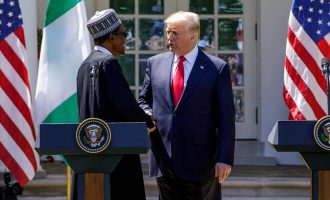 Buhari's US speech is rice without stew