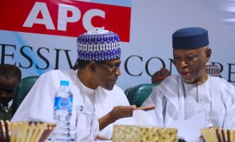 'Affliction won't rise a second time' — reactions to Buhari's reelection bid