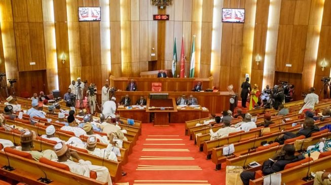 Senate Bows To Court Order On Omo-Agege's Reinstatement