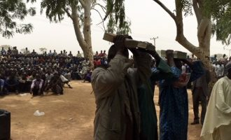 '750 kidnappers, cattle rustlers' surrender in Kaduna