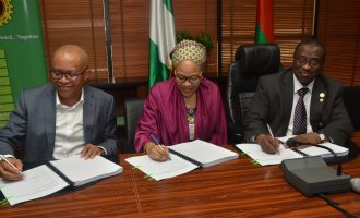 NNPC, Chinese firms sign mega gas deal 'to industralise Nigeria'
