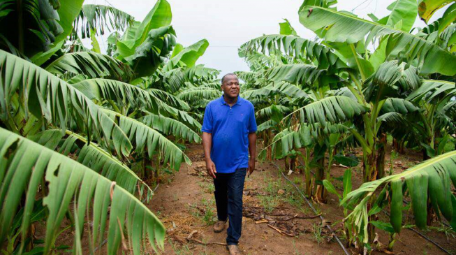 Situating Nigeria's agric potential