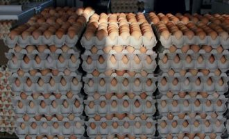 'Officials steal' crates of eggs, tubers of yam meant for school feeding programme