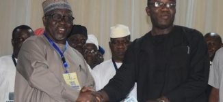 PHOTOS: Al-Makura presents certificate of return to Fayemi