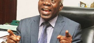Falana to senate: Accept my sympathy, you lack power to summon IGP