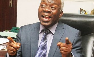 Falana: Those who cornered our commonwealth shouldn't talk of restructuring
