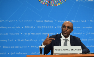 IMF raises red flag on increased borrowings by Sub-Saharan African countries