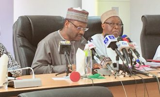 INEC removes 'over 300,000' names from voter register