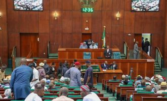 National assembly and its passion for unromantic insertions