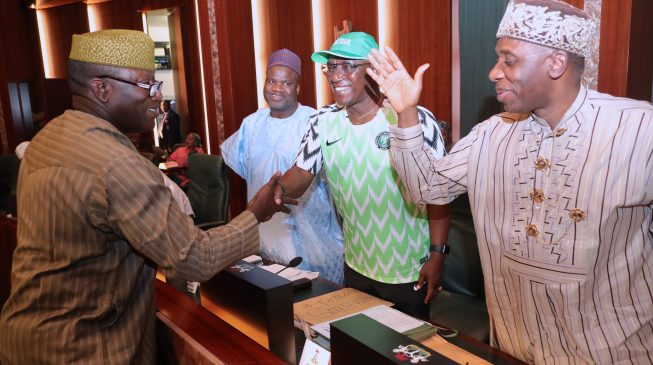 FEC members shower tributes on Fayemi as he bows out of Buhari's cabinet