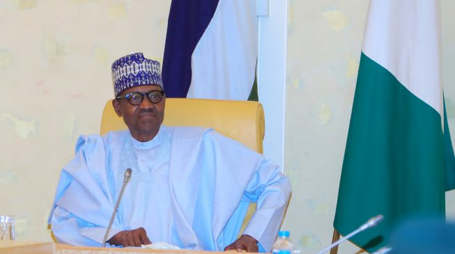 Buhari rules out meeting with  nPDP members