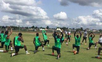World Cup Special: Meet the 23 'anointed' Eagles flying to Russia