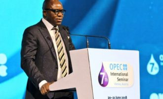 Kachikwu: Buhari has never called me to give anybody oil block