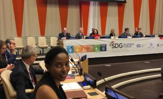 LADOL MD asks UN to support private sector in developing countries