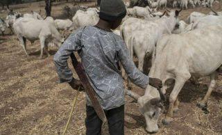Herdsman kill police inspector in Kebbi