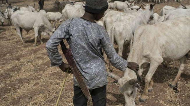 JUST IN: Herdsman kill police inspector in Kebbi