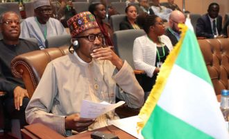 Femi Adesina: Foreign governments aren't opposed to Buhari's second term