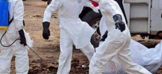 198 dead in Congo's worst Ebola outbreak