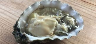 Eat Me: Aphrodisiac, weight loss… seven reasons to love oyster