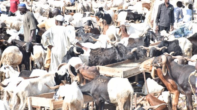 Eid-el-Kabir: FG declares Tuesday, Wednesday as public holidays