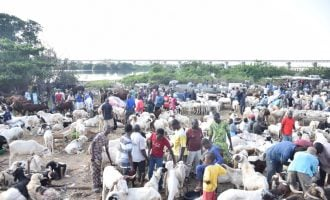 PHOTOS: Lagos residents in last-minute rush for Sallah rams