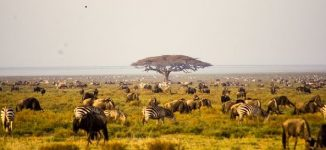 Travel Guide: Six top tourist destinations to visit across Africa
