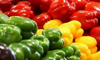 Eat Me: Green, yellow or red, here are seven reasons bell pepper is great for you