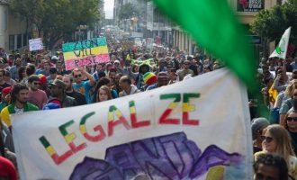 South Africa legalises marijuana use