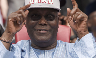 The choice of Atiku 'shows PDP is democratic'