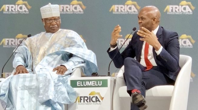 Elumelu: If local players are burnt, foreign investors won't come